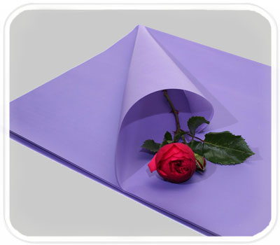 Фото товара Бумага для упаковки подарков (color-006)