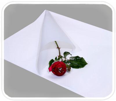 Фото товара Бумага для упаковки подарков (color-008)