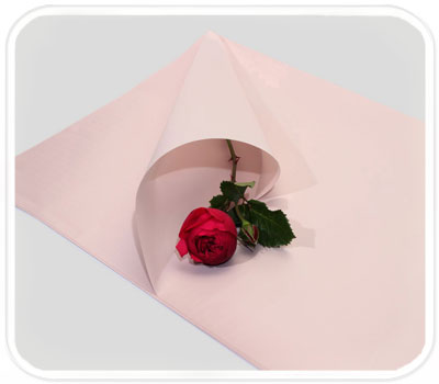 Фото товара Бумага для упаковки подарков (color-010)
