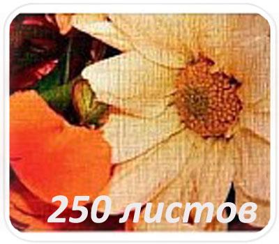 Фото товара Фактурная бумага Linen embossed 250 л. (Лен)