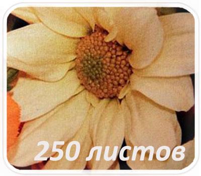Фото товара Фактурная бумага Textile embossed 250 л. (Ткань)